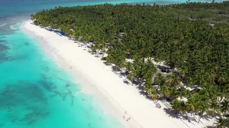 dominican : Aerial view on tropical island with coconut palm trees and turquoise caribbean sea