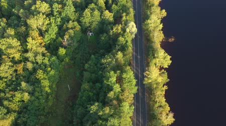 orta hava : Aerial view from drone on asphalt road at the forest