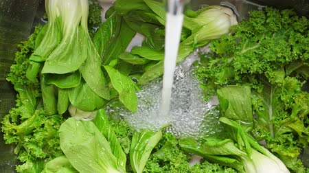 repolho : Washing in water in sink green kale and pok choy cabbage leaves in kitchen