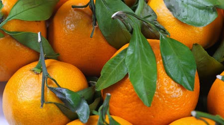 mandarina : A lot of tangerines with green leaves Archivo de Video