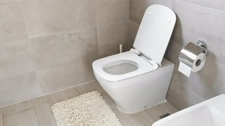 toilet paper : White ceramic toilet and bidet at luxury bathroom