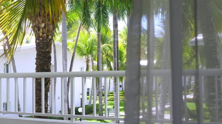 handrails : Tropical view on garden with palm trees from hotel balcony. Summer vacations Stock Footage