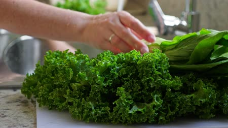 промывали : Woman washing in water in sink green kale cabbage leaves in kitchen