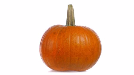kalebas : Ripe pumpkin isolated on white background