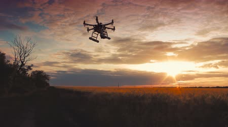 pszenica : Custom drone hexacopter takes off at sunset Wideo