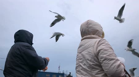 People on the ferry are fed bread with gulls hovering in the air against the cloudy sky. Slow motion.