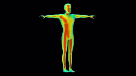 Loopable turntable of Human body scan by infrared rays measure with alpha channel footage motion background.