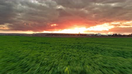 umutlu : Beautiful hopeful Cloudy Sunset with Horizon red burning sky clouds over a green field in nature