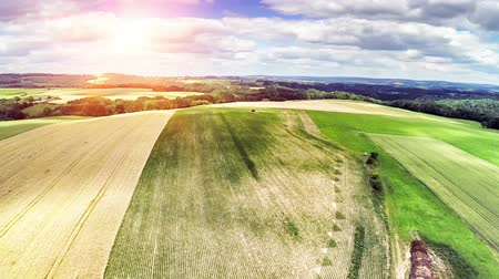 Take off and aerial view of summer countryside with agricultural fields. Full HD, 1080p