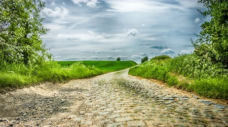 Country road on cloudy summer day. Nature background.