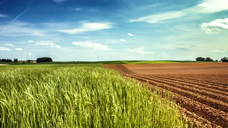 Panoramic view of agricultural fields, slider shot. Full HD, 1080p Stok Video