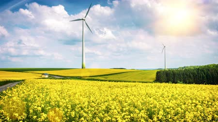 Country landscape with wind turbines. Ecological concept. 4K, Ultra High Definition, Ultra HD, UHD, 2160P, 3840 x 2160