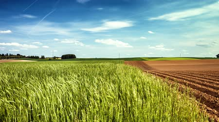 plowed land : Panoramic view of agricultural fields, slider shot. Full HD, 1080p Stock Footage