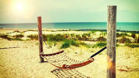 Seaside landscape with hammock on sand beach. Summer travel background. Full HD, 1080p Stok Video