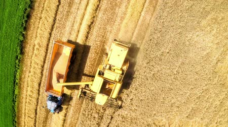 Agricultural sequence of making bread from the beginning - aerial view and closeup of wheat field, aerial view and closeup of harvesting process, freshly baked bread on rustic table (slider shot) Stok Video