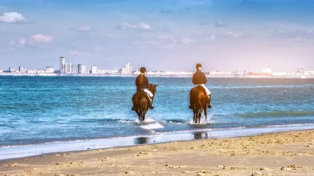 Group of women riding horses at beach. Sea recreation background. 4K, Ultra High Definition, Ultra HD, UHD, 2160P, 3840 x 2160