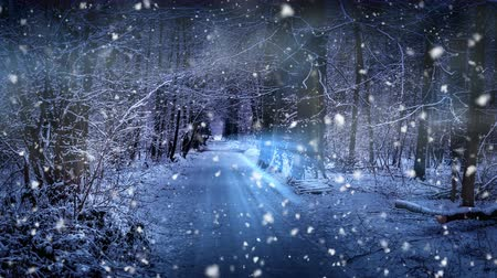 Christmas seamless looping with falling snow. Magic Christmas background with snow covered road in winter forest. 4k Stock Footage