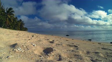 oceano pacífico : Rarotonga Cook Islands Time Lapse Of Seascape With A Couple Of Girls Walking Along Beachfront On Tropical Beach In The South Pacific Ocean On Sunny Day With Cloudy Blue Sky In Polynesia South Pacific