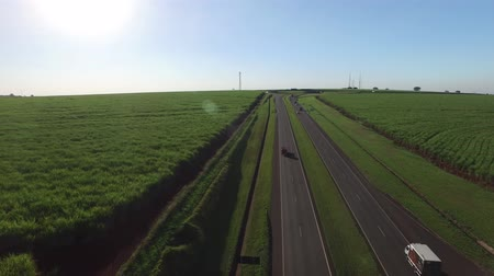 farm in brazil : Aerial sugarcane field in highway Alexandre Balbo in Ribeirao Preto, Brazil. Stock Footage