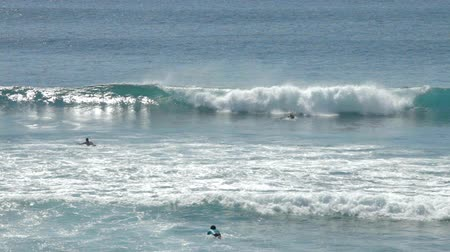 серфер : People swimming on surfboard in waves off the coast of Bali, Indonesia Стоковые видеозаписи