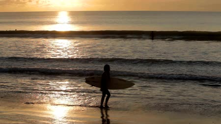 surf : Woman walking at sunset with surfboard on beach in Bali Dostupné videozáznamy