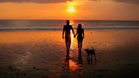 plaz : Couple playing on beach with dog at sunset in Bali