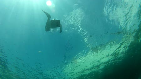darmowe : free diver swimming underwater in apnea