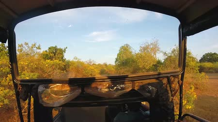 adrenalin : YALA NATIONAL PARK, SRI LANKA - MARCH 2014: View from moving Jeep during safari in Yala National Park.