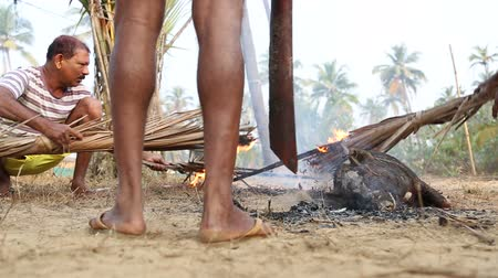 male animal : GOA, INDIA - 23 JANUARY 2015: Men burning dead animal with fired reed.