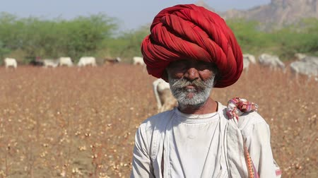local : JODHPUR, INDIA - 14 FEBRUARY 2015: Portrait of local Indian cattle keeper at field in Jodhpur.