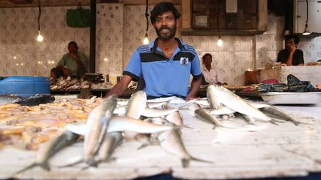 asian and indian ethnicities : MUMBAI, INDIA - 8 JANUARY 2015: Men selling fish at the stand of local street market in Mumbai. Stock Footage