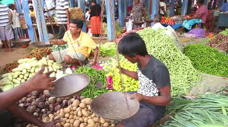 indian ethnicity : HIKKADUWA, SRI LANKA - MARCH 2014: Portrait of local young man selling vegetables at Hikkaduwa Sunday market, known for its wide range of fresh and varied produce.