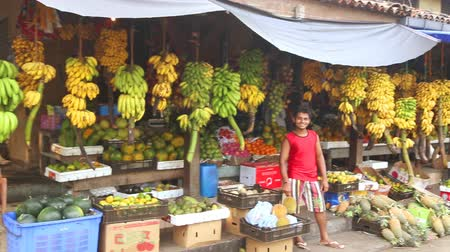 фронт : GALLE, SRI LANKA - MARCH 2014: Local fruit store with worker standing in front of hanging bananas and other exotic fruit. Tropical fruit is available all year round in the country. Стоковые видеозаписи