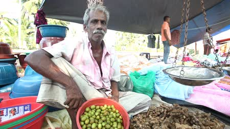 betel : HIKKADUWA, SRI LANKA - FEBRUARY 2014: Local man sitting and selling betel nuts at Hikkaduwa market. Hikkaduwa Sunday market is known for its wide range of supplies.