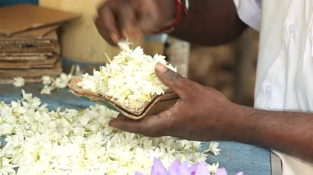 plucked : Close up view of hands making flower arrangements for temple offerings in Kandy, Sri Lanka