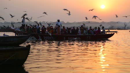 varanasi : VARANASI, INDIA - 22 FEBRUARY 2015: Boat full of people sailing through Ganges at sunset, with birds flying above. Stock Footage