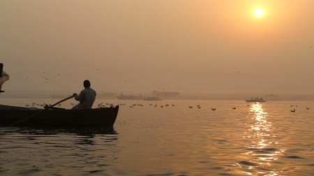 varanasi : Silhouette of man rowing down the Ganges at sunset, with birds above water.