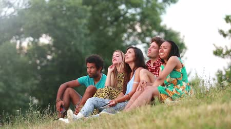 hipster : View of a group of five friends sitting on the grass and having a lot of fun taking selfies, graded warmer.