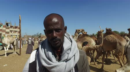 aswan : DARAW, EGYPT - FEBRUARY 6, 2016: closeup of local man at Camel market in Daraw