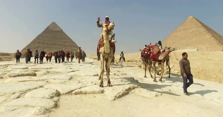 kahire : CAIRO, EGYPT - FEBRUARY 04, 2016: Locals and tourists at Giza pyramids complex Stok Video