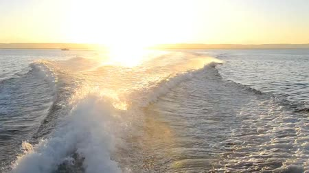 żaglówka : View of ocean from motor yacht sailing with wake and sunset Wideo