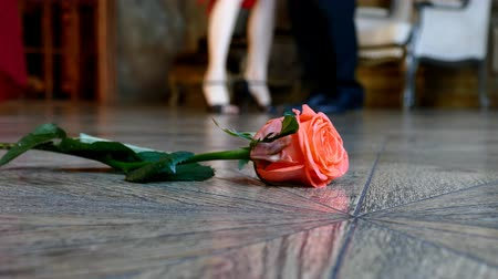 kübalı : Red rose on the floor on dancing people background Stok Video