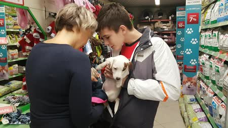 Mom and son wear small white terrier puppy in the store. NOW 24, 2018 MOSCOW, RUSSIA Dostupné videozáznamy