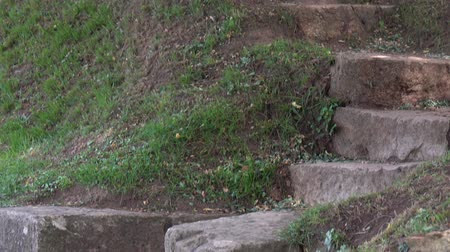 Old Stone Staircase and Footpath