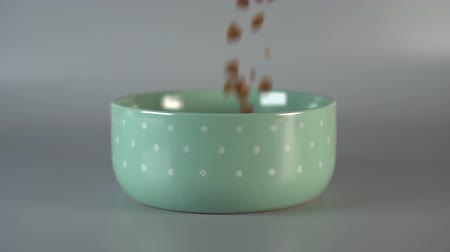 Pieces of pet food fall into a green bowl and fill. Slow motion
