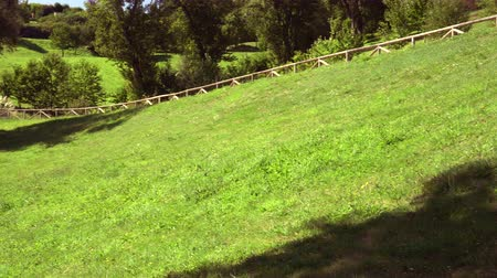 ограждение : Picturesque hillside with grass, trees and a footpath with wooden handrails. Countryside beauty