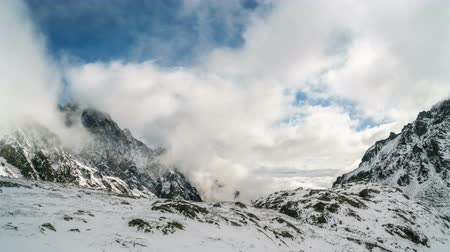 chamois : Clouds roll in snowy mountains valley with chamois looking for food in winter time lapse