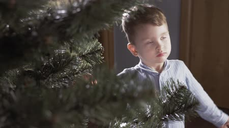 Boy decorate a Christmas tree Stok Video