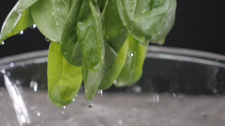 Hands washing spinach. Slow motion