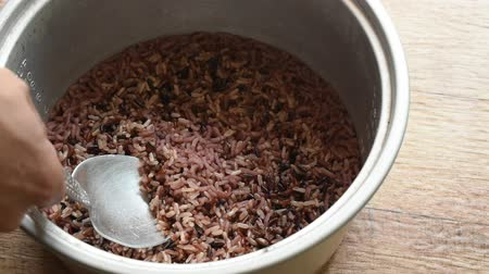 conveniente : germinated purple brown rice in electric cooker scooping by silver ladle Stock Footage